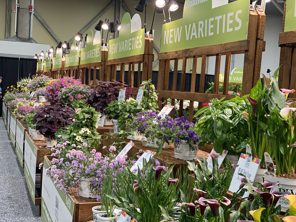 new varieties at Cultivate
