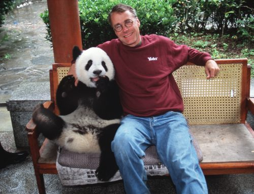 Sorrow and Solace in Sichuan on 9/11