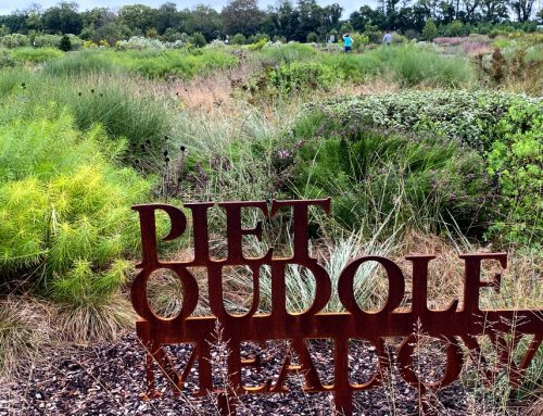 Delaware Botanic Garden Update, and How its Meadow is Managed